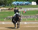Marie DeWitt Dressage in  Directory Trainer