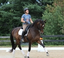 Adear in  Horses For Sale