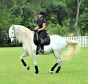Deirdre Dressage in  Directory Trainer