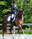 Zimmeron in  Horses For Lease