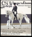 CS Wingardium Leviosa in  Horses For Sale