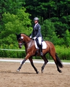 Avanne in  Horses For Sale